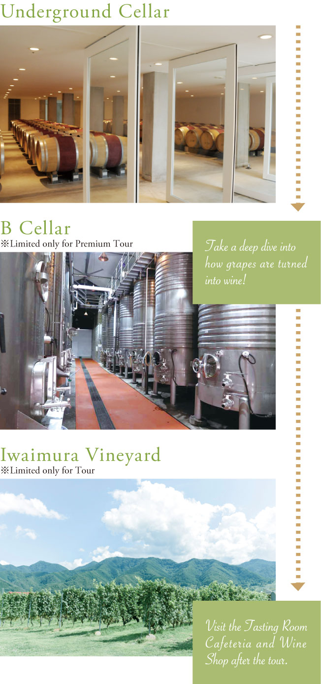 Underground Cellar > B Cellar [Take a deep dive into how grapes are turned into wine!] *Limited only for Premium Tour > Iwaimura Vineyard [Visit the Tasting Room Cafeteria and Wine Shop after the tour.] *Limited only for Tour