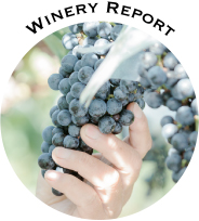 WINERY REPORT